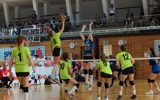 Hartberg und Dornbirn sowie Klagenfurt und Purgstall im Halbfinale der Volleyball Bundesmeisterschaft